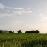 Finca de la Casa Rural